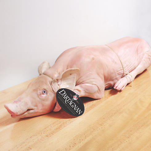 Suckling Pig, Whole Roasting Pig