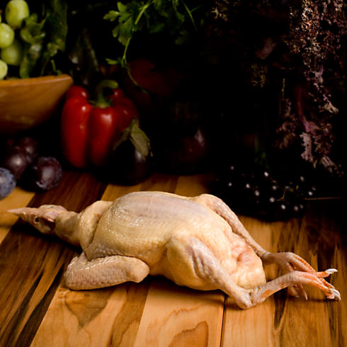 Whole NY Dressed Natural Squab