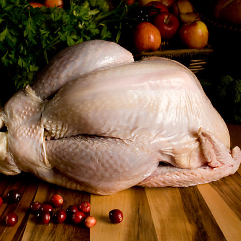USDA Certified Organic, Free-Range Turkey