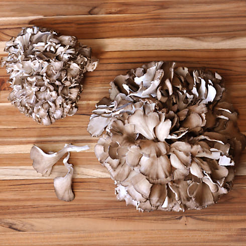 Organic Maitake (Hen of the Woods) Mushrooms