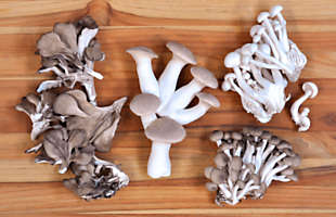 Fresh Organic Chef's Mix Mushrooms