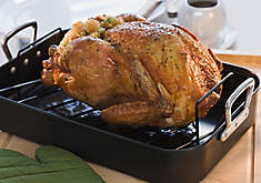 Roasted Holiday Turkey Cooking Guide